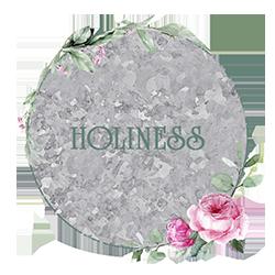 Beth Corder | Galvanized Gardens: Holiness